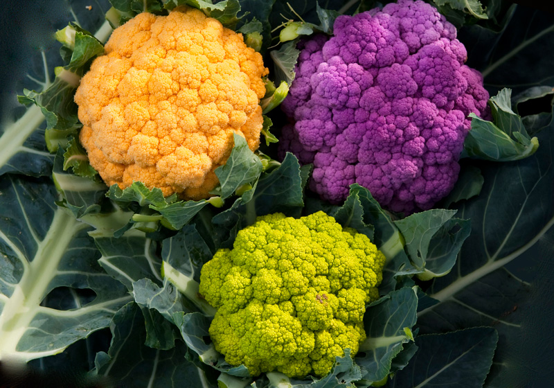 Какой сорт цветной капусты лучше сажать в подмосковье в открытый грунт 100