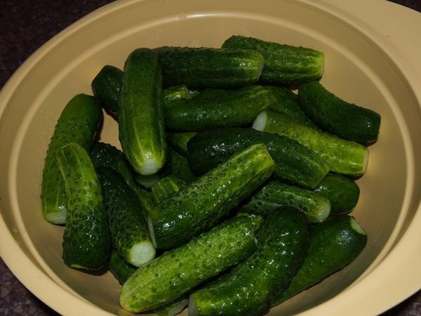 Salatalık turşusu için tarifler veya geleneksel bir Rus atıştırması nasıl hazırlanır 13