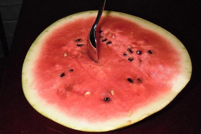 Как красиво нарезать арбуз и дыню на праздничный стол фото