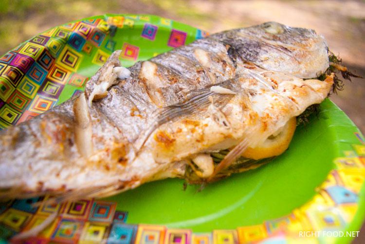 Folyoda kömür üzerinde balık pişirmek nasıl